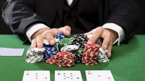Explore the best gambling from the best site