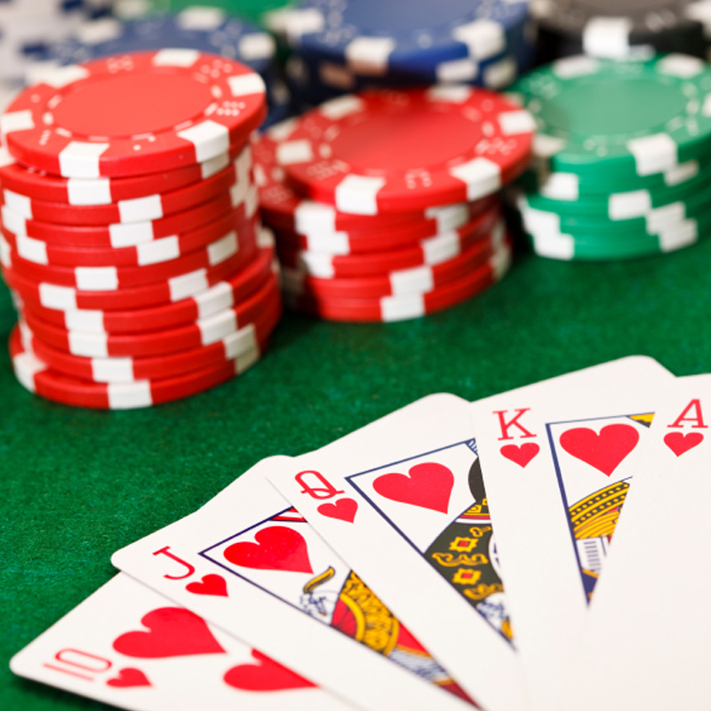 Choose the best bettor for surviving in online casinos